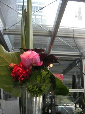 hanazen Florist  今日のショーケース_d0122382_18225278.jpg