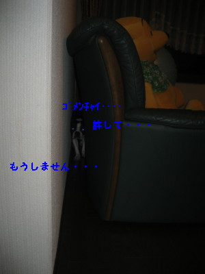 c0092787_9321259.jpg