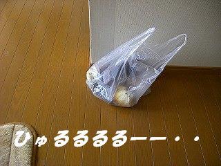 e0011787_8334755.jpg