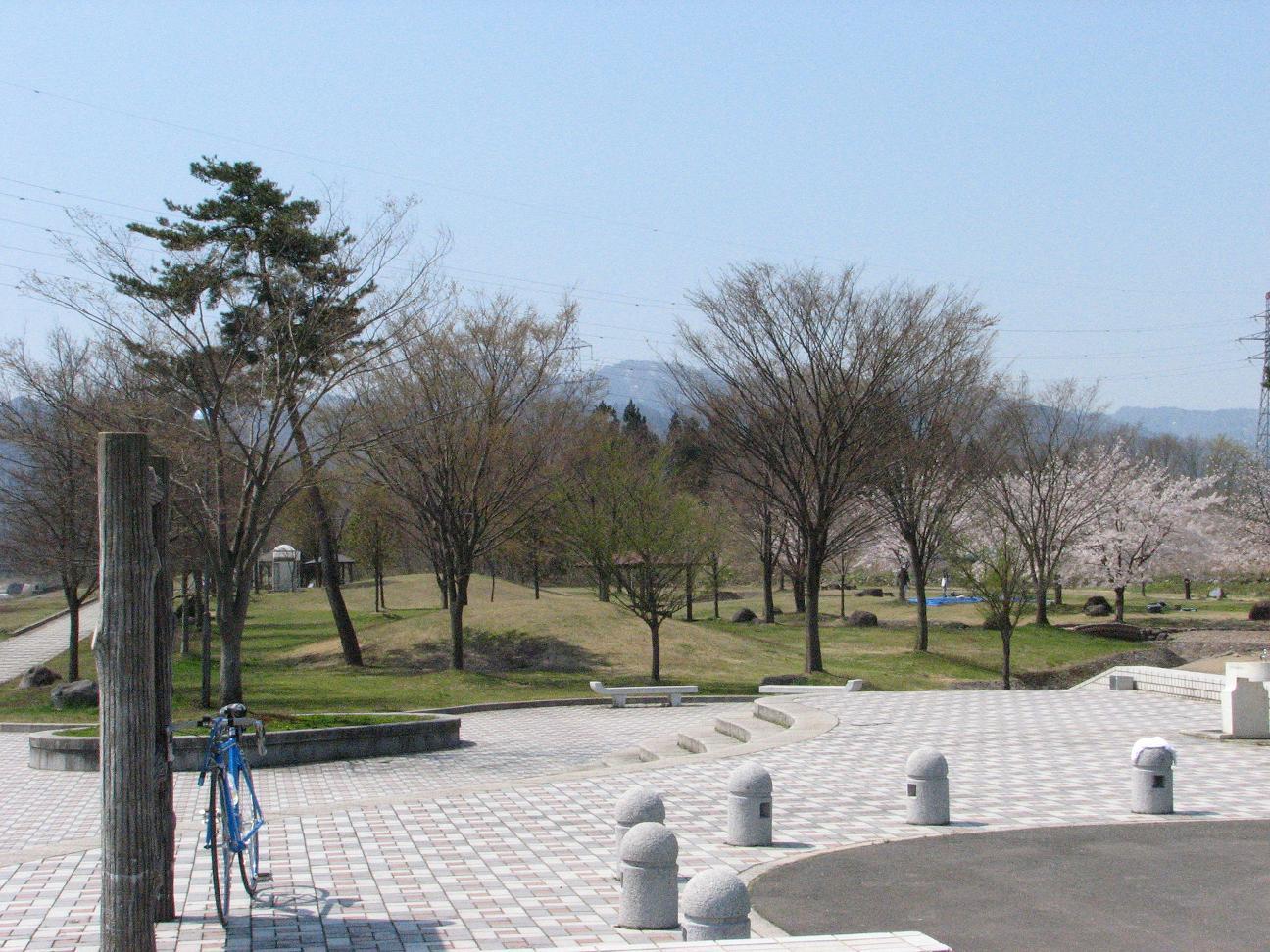直江堤公園の紹介_c0075701_031843.jpg