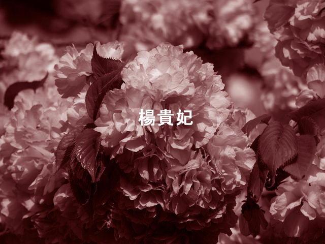 f0099535_10313319.jpg
