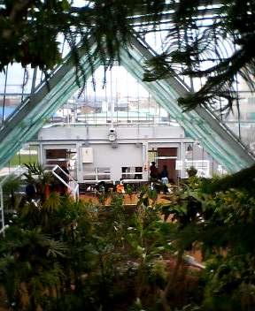 函館市熱帯植物園がリニューアルオープン!_b0106766_15245056.jpg