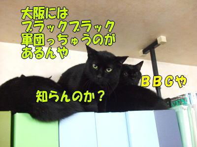 b0041182_15541534.jpg