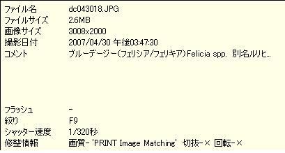 f0070279_013865.jpg