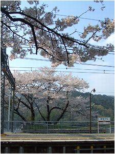 駅_b0067302_2044972.jpg
