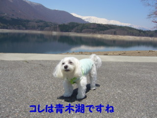 f0005727_1136878.jpg