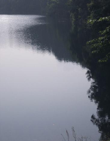 早朝の蒲生の池_c0107829_12322628.jpg