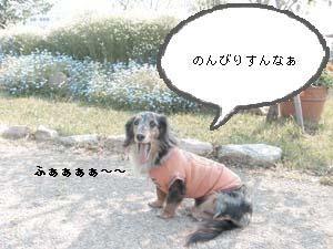 d0020869_2219512.jpg