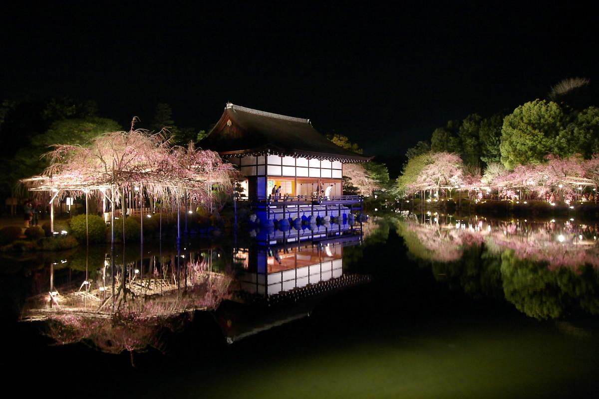 京都 平安神宮 紅しだれコンサート_f0021869_21374332.jpg
