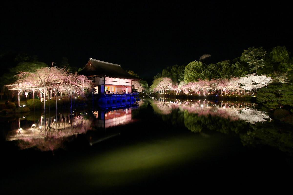 京都 平安神宮 紅しだれコンサート_f0021869_21381951.jpg