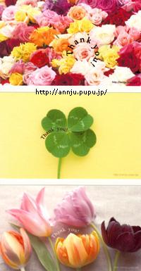 c0051385_23385762.jpg