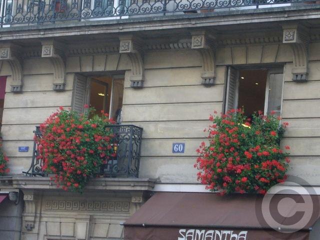 ■窓(パリ)_a0008105_2004659.jpg