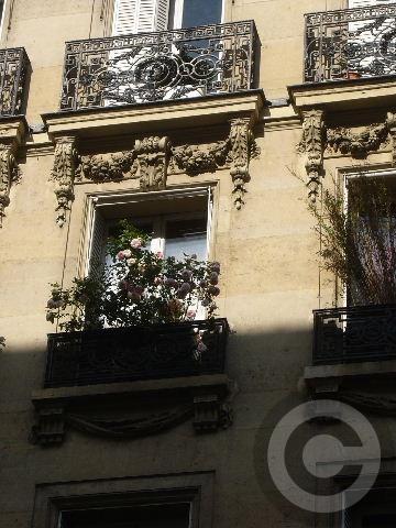 ■窓(パリ)_a0008105_2011899.jpg