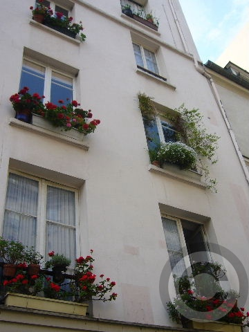 ■窓(パリ)_a0008105_202229.jpg