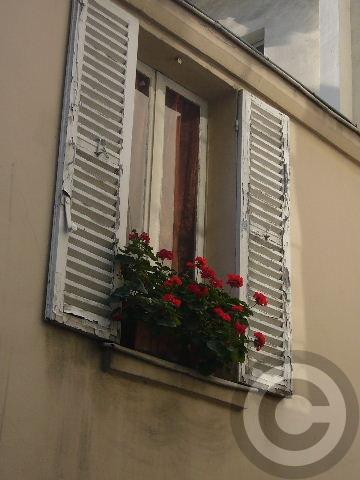 ■窓(パリ)_a0008105_202823.jpg