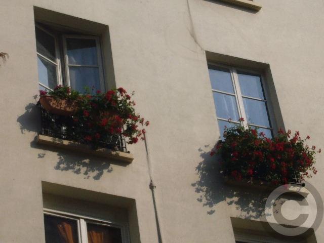 ■窓(パリ)_a0008105_2034066.jpg