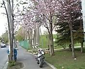 f0080912_18492693.jpg