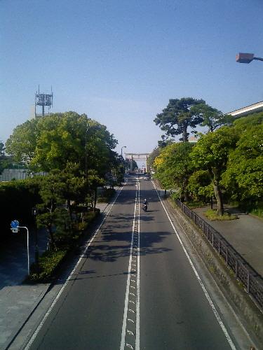 早朝散歩_f0045052_90380.jpg