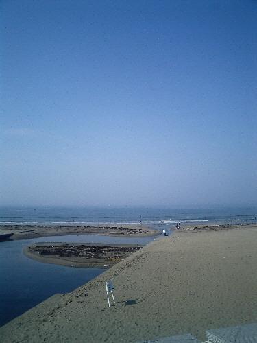 早朝散歩_f0045052_903845.jpg