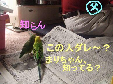 b0082757_22303487.jpg