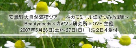 f0094800_203252100.jpg