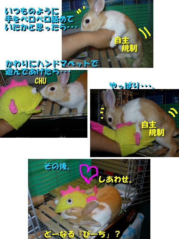 a0095546_20123553.jpg