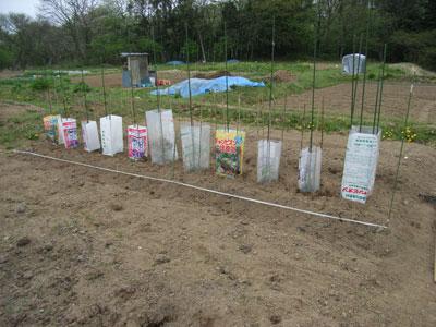 農園便り・補助装置_c0063348_1741497.jpg