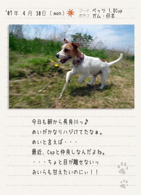 b0040323_14221489.jpg