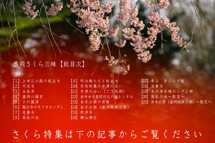b0072697_2073229.jpg