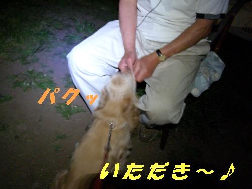 b0067012_0543133.jpg