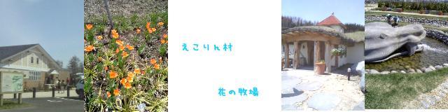 d0020136_16541488.jpg