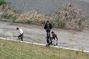 スギ関ハッピ&でき杉クローン1号、宮崎へ行く!_f0119692_19433517.jpg