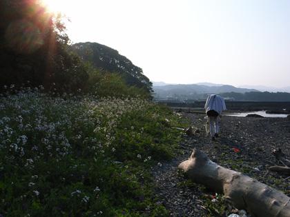 4月11日 うち戻しの道、ふたたび大岐の浜へ。_c0049299_20593391.jpg