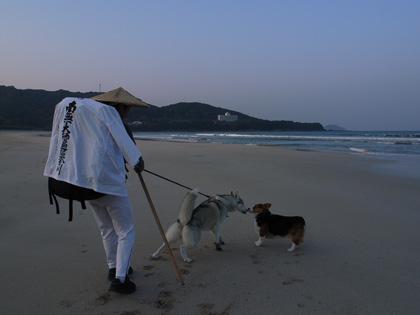 4月11日 うち戻しの道、ふたたび大岐の浜へ。_c0049299_2191764.jpg