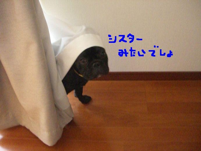 c0113109_0193581.jpg