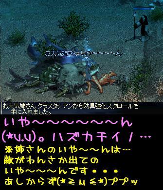 姉さんへ_f0072010_510597.jpg
