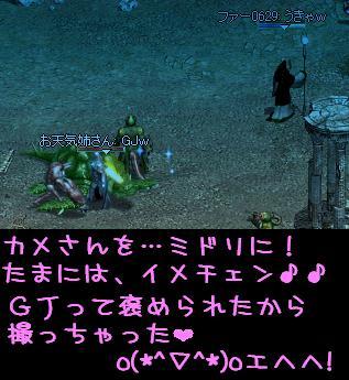 姉さんへ_f0072010_518529.jpg