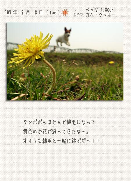 b0040323_0535973.jpg