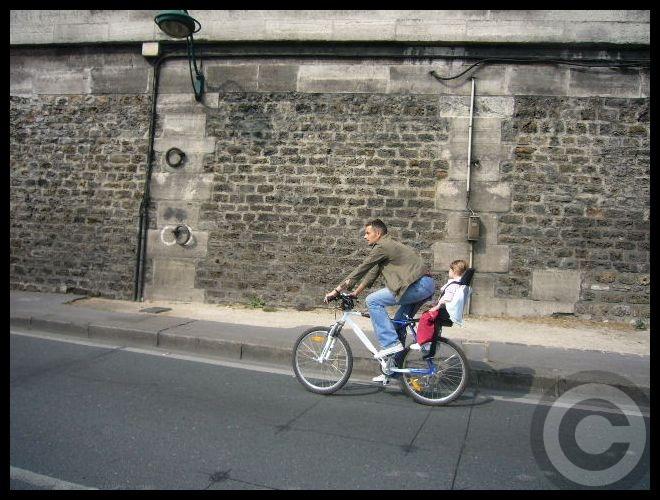 ■日曜日のセーヌ(パリ)_f0063227_1922446.jpg