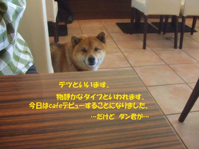 f0059334_91641.jpg