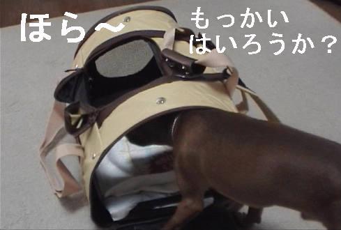 f0123589_17433245.jpg