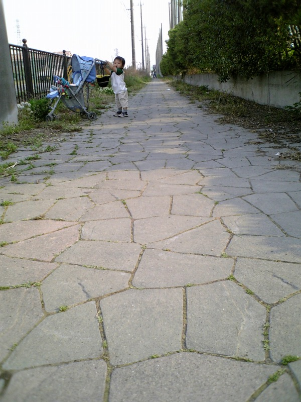 f0074293_1585827.jpg