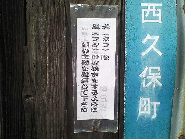 b0075797_781616.jpg