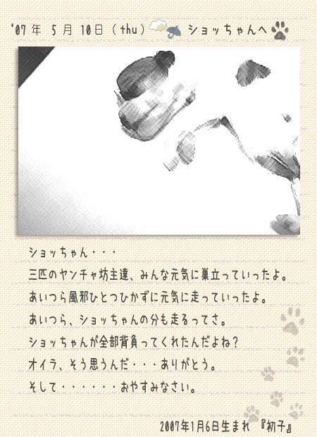 b0040323_16523977.jpg