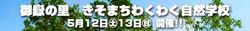 f0135123_232903.jpg