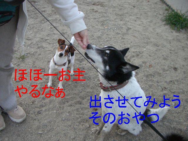 f0053952_10464484.jpg