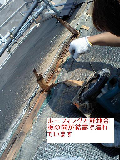 屋根裏の結露_c0108065_1432691.jpg