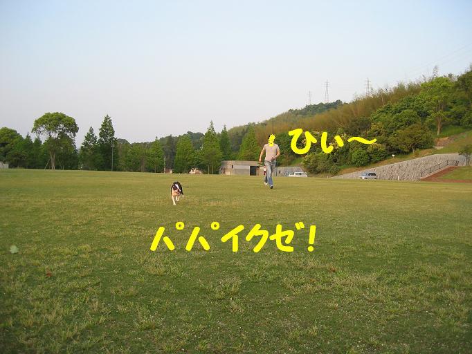 a0080889_036385.jpg