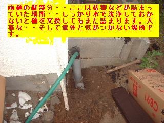 屋根工事完了 4日_f0031037_17141667.jpg