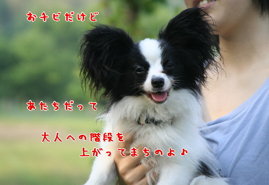 d0013149_061896.jpg